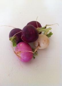Easter egg radishes.  LOVE these colors!