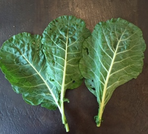 collard_leaves